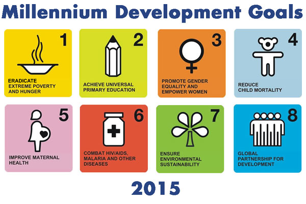 gender disparities and maternal health essay